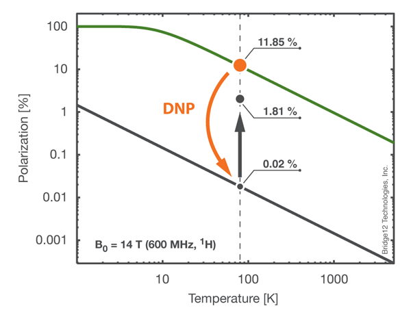 Example of DNP-NMR Experiment
